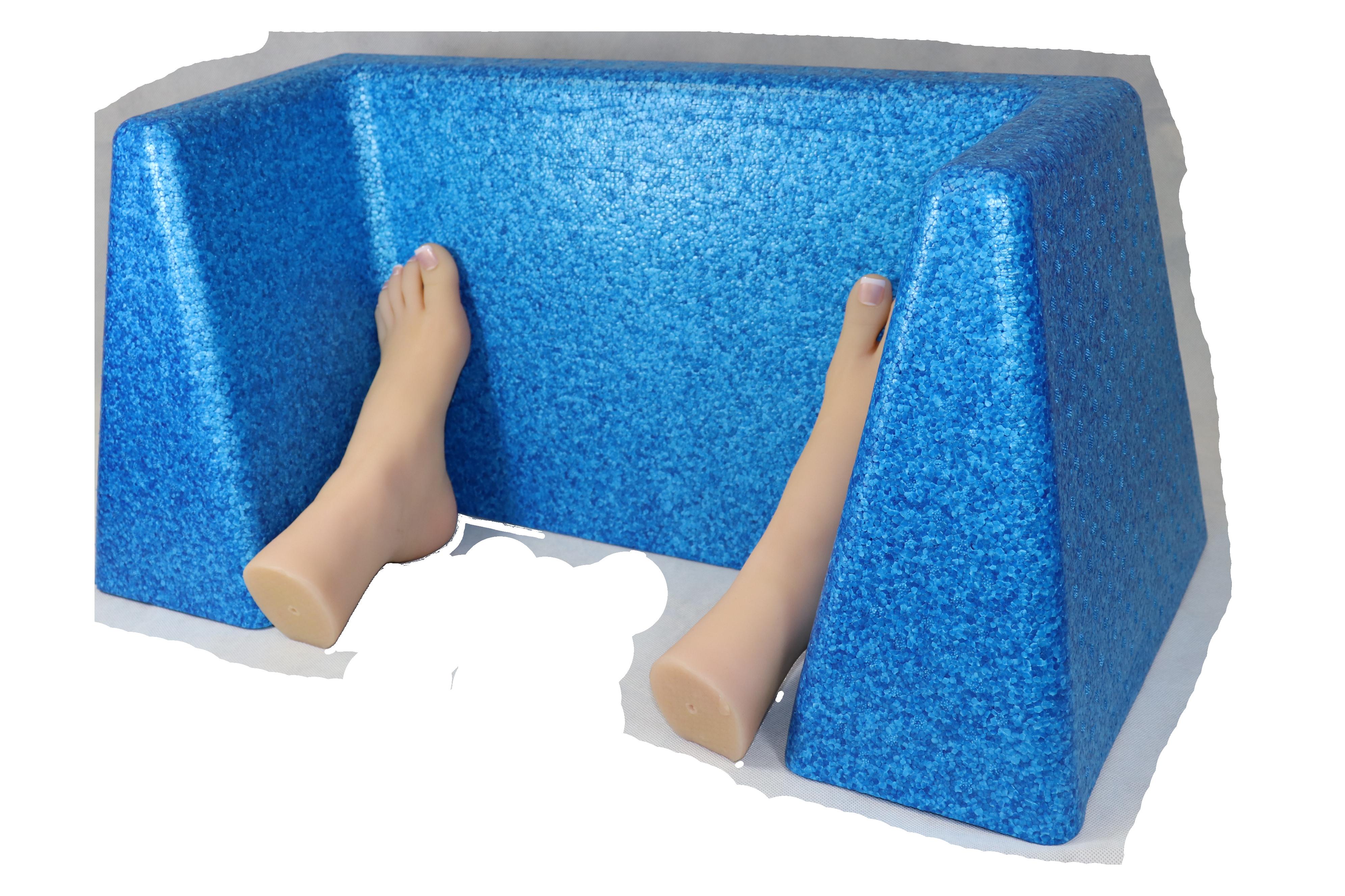 Blue Foot Fort